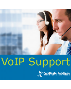 1 Hour of VoIP Support